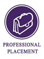 professional  placement services with text